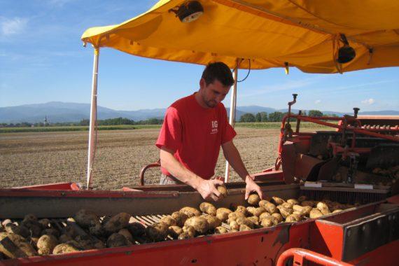Découverte de la ferme Reymann à 68 Raedersheim avec quelques photos