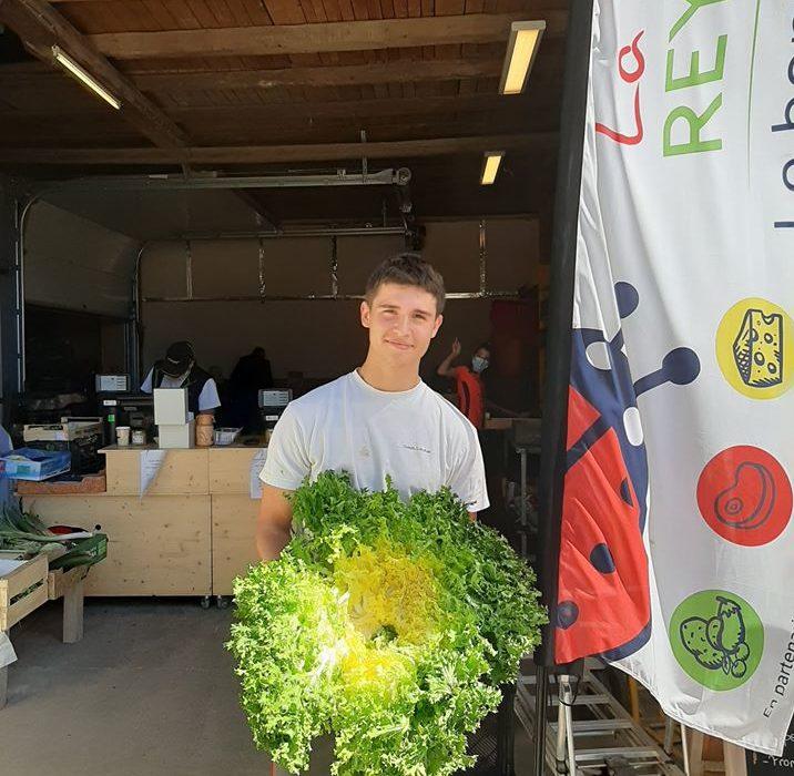Salade Ferme Reymann Raedersheim : de bons et beaux légumes en circuit court