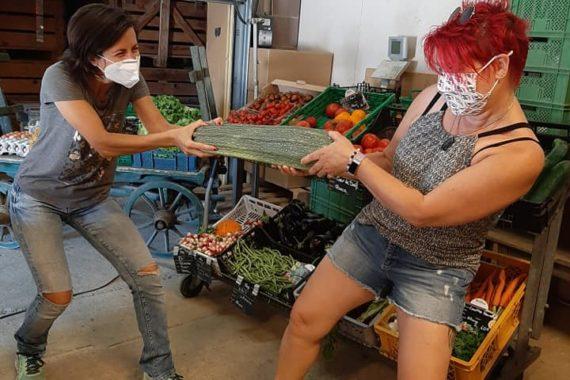 Ferme Reymann, 68 Raedersheim, Asperges, fraises, pommes de terre. Devinez son poids et gagnez-là ! Je parle de la courgette bien entendu. Petit jeu concours sans obligation d'achat.