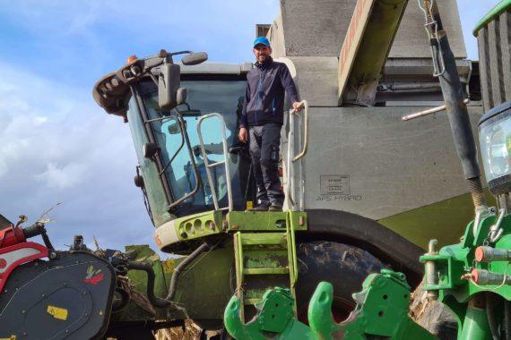 Après la récolte des pommes des terre, nous vous présentons, non sans fierté, le 2ème volet du travail de notre terre ! Là, c'est la saison de la récolte du maïs, c'est-à-dire la saison des moissons !