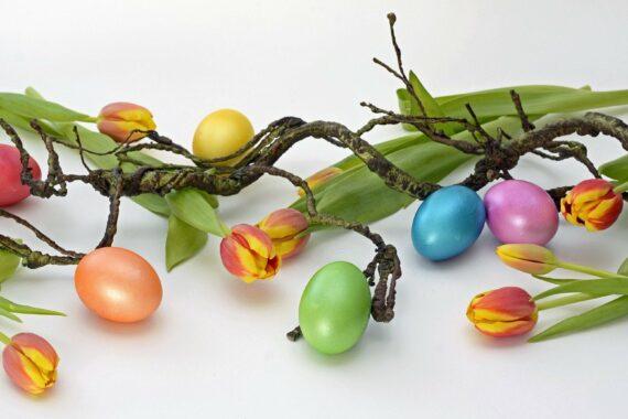 Les fêtes de Pâques s'annoncent et avec elles la perspective de moments conviviaux avec nos proches ! A la Ferme Reymann nous vous avons sélectionnés des produits d'exceptions de nos producteurs adorés à réserver dès ce lundi 22 mars sur notre site
