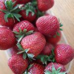 01/06/2021 : Surprise !! Les fraises seront ALSACIENNES cette semaine