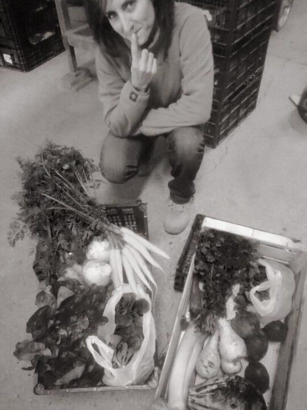 Panier de légume 4